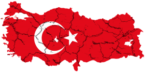 turkey_cracks047